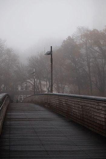 Footpath amidst trees against sky during foggy weather