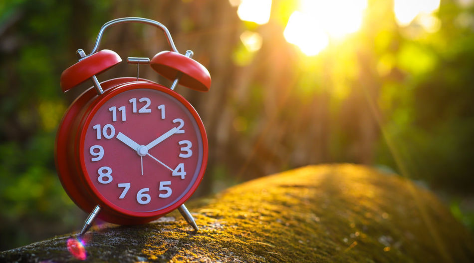Red Alarm Clock Clock Alarm Clock Time Number Minute Hand Clock Face Focus On Foreground No People Red Accuracy Outdoors Clock Hand Close-up Hour Hand Nature Day Deadline Tree Shape Wood - Material Red Alarm Clock Clockworks
