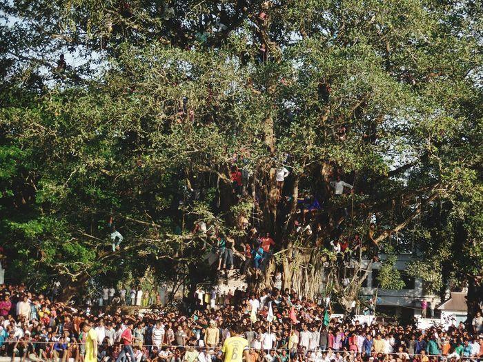 Fottball fans At Tree To Watch A Match First Eyeem Photo