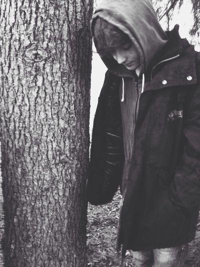 Escaping Rain Trees Friends