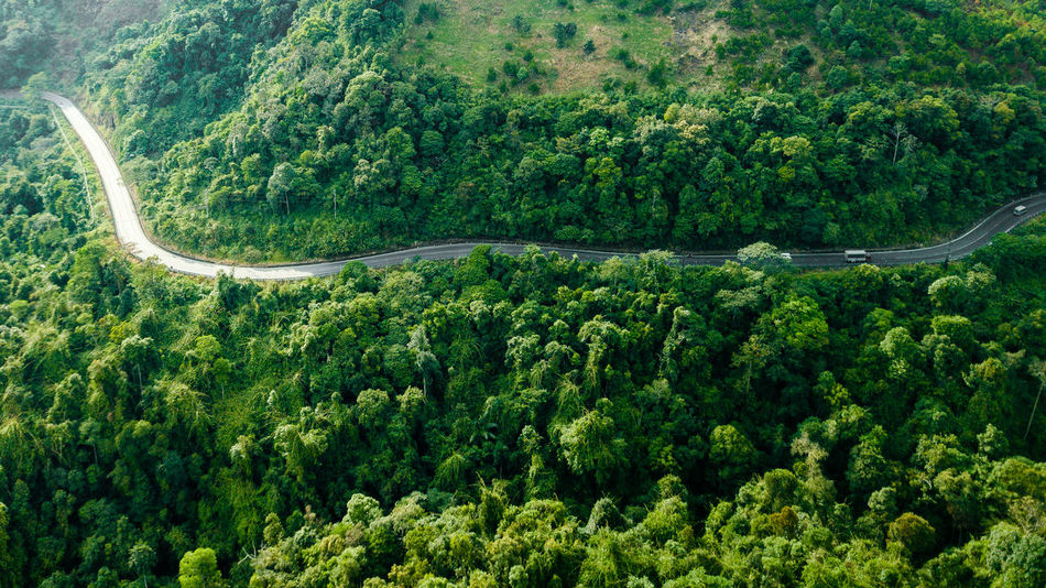 DJI X Eyeem Drone  Aerial View Beauty In Nature Curve Day Dronephotography Flying Forest Green Color Growth High Angle View Landscape Lush Foliage Mountain Nature No People Outdoors Plant Road Scenics Skypixel Tranquility Transportation Tree Winding Road