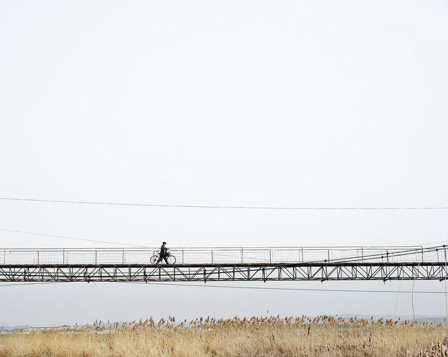 Reed - Grass Family Reed Foot Bridge Walking Walking On The Bridge Bridge - Man Made Structure Bridge One Person One Man Only Men Bicycle Bike Riding Bike Nature Minimal Minimalism Water Beach Silhouette Rural Scene Sky Low Tide Tranquil Scene Scenics Non-urban Scene Tranquility Calm Countryside Idyllic