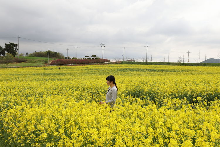 Side view of woman standing in oilseed rape against sky