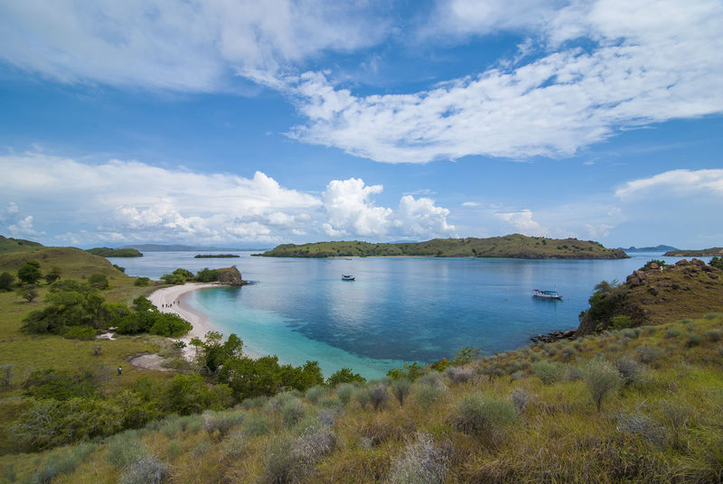 INDONESIA Pink Beach Beauty In Nature Cloud - Sky Day Grass Growth Idyllic Land Nature No People Non-urban Scene Outdoors Padar Island Plant Scenics - Nature Sea Sky Tranquil Scene Tranquility Travel Water