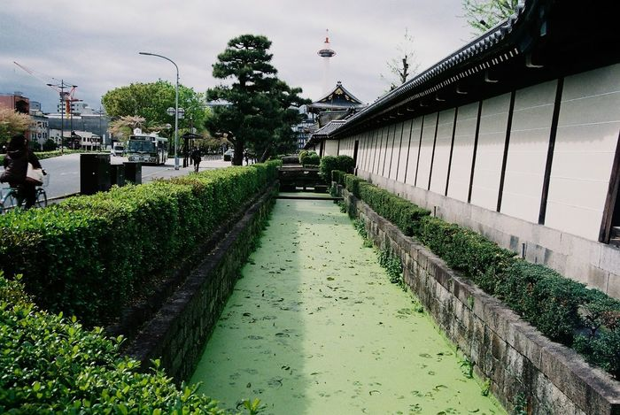 Higashi Hongan-ji Temple - Building Moat Outdoors Cloud - Sky Building Exterior Green Film Photography Pentax KM Tefnon 35-70 Fuji C200 3XSPUnity