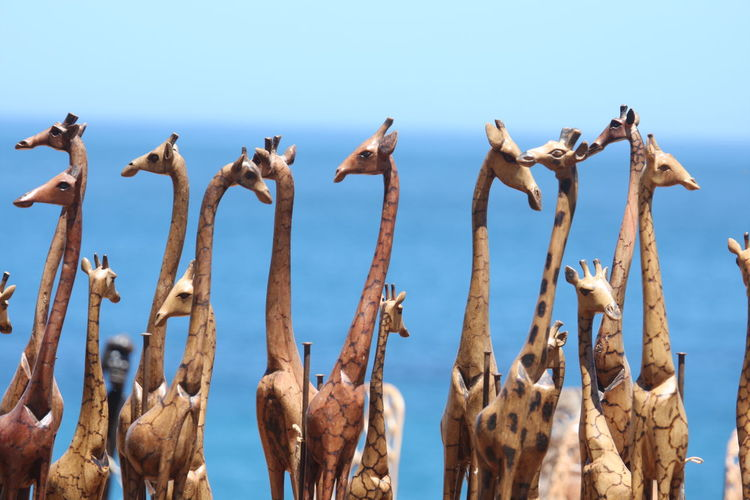 Close-up Day No People Outdoors Sky Souvenirs Wooden Animals Wooden Giraffes