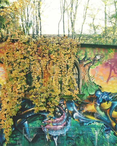 Zam Centrosociale Milan Windows Nature Urbanphotography Streetphotography Streetart Murales Colors
