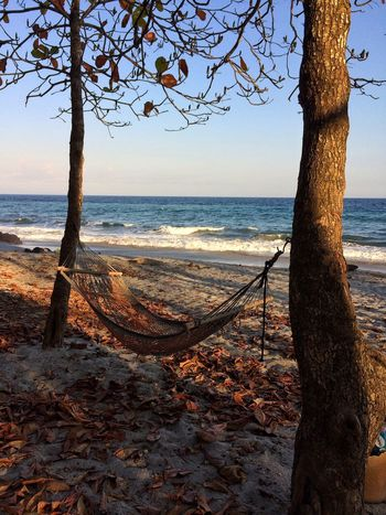 Hanging Out Hammock Peaceful Paradise Beach Palmtrees Hello World Costa Rica Relaxing Recreation