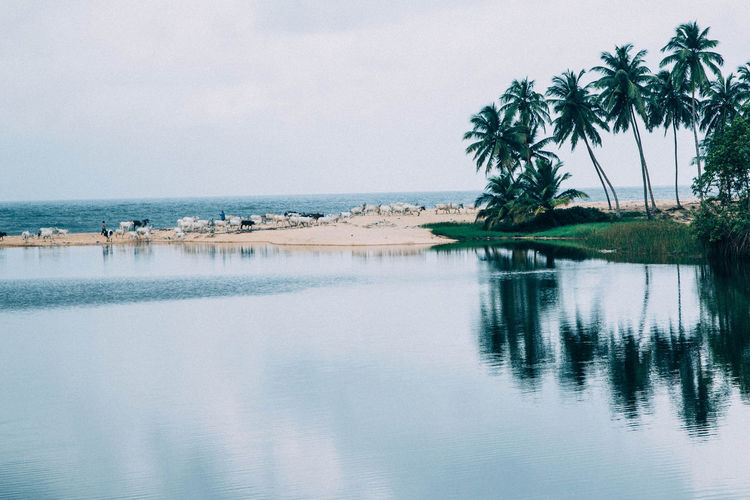 View of calm sea against sky