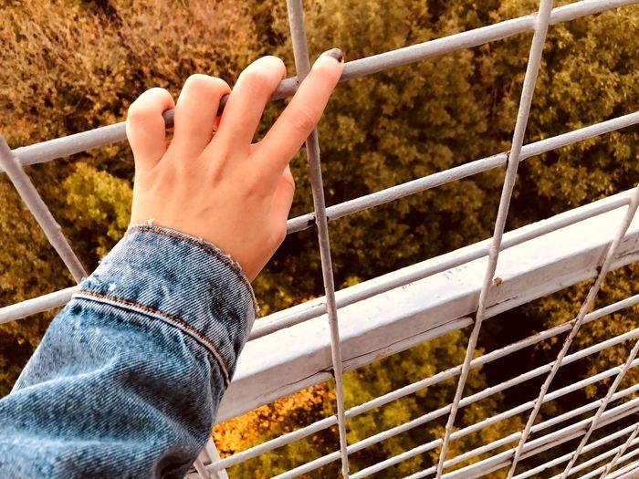 High Angle View