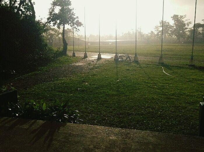 Borongan ESSU Campus Green
