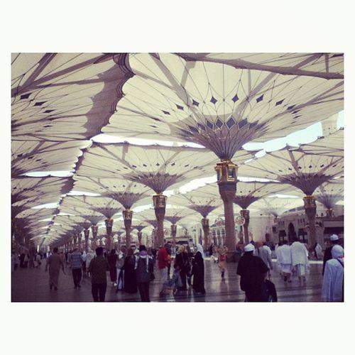 Beautiful inverted umbrellas ? Madinah Umrah Travel