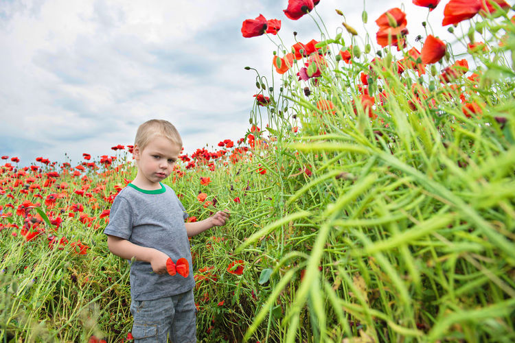 Portrait Of Boy Standing Against Red Poppy Flowers