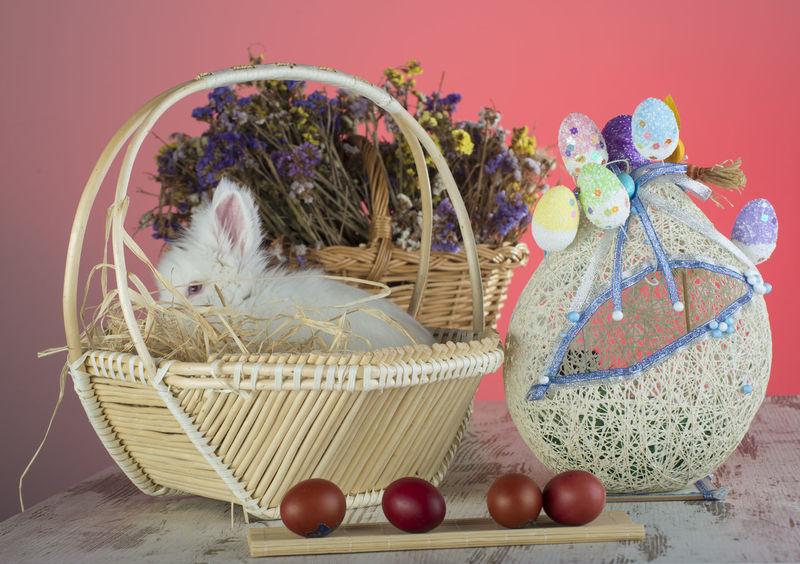 Easter Easter Bunny Easter Egg Easter Ready Basket Celebration Decoration Easter Egg