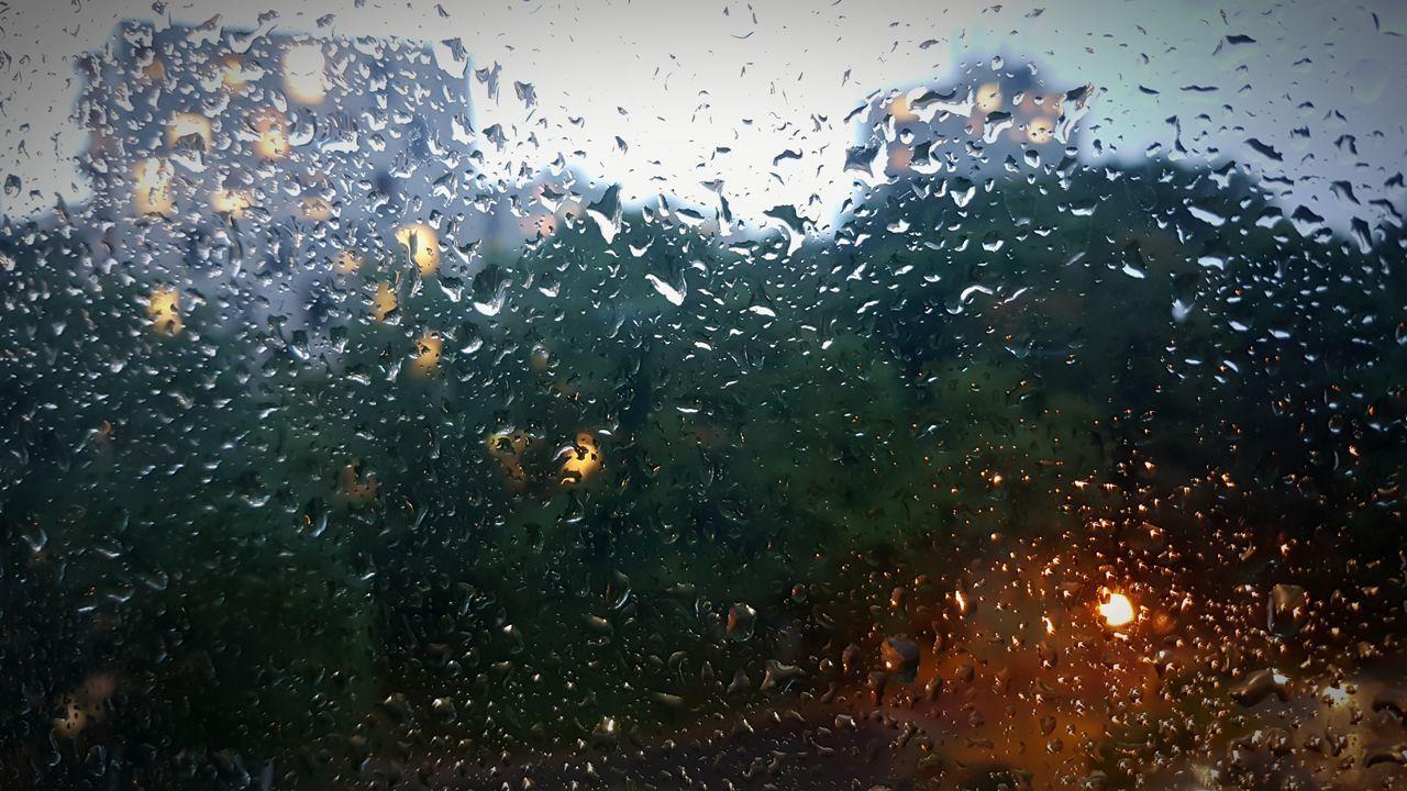 water, wet, rain, glass - material, window, rainy season, drop, raindrop, weather, indoors, no people, nature, swimming, sky, close-up, day, animal themes, tree, undersea