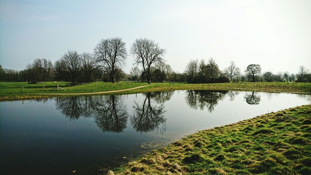 Milton Keynes Woughton On The Green Buckinghamshire Reflections In The Water Reflection Perfection  Reflection Photography Nature On Your Doorstep Winter Walk Miltonkeynes
