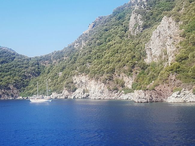 sailboay in Mediterranean Travel Ocean Enjoy Summer Sea Destination Ship Summer Tree Water Mountain Forest Pinaceae Beach Pine Tree Lake Blue Sky Standing Water Rock Formation Calm Rocky Mountains Geology Rock Rocky Coastline Cliff Natural Arch Mountain Range Countryside Waterfront Rock - Object