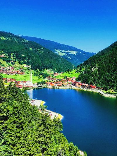 Uzungöl Trabzon Plant Water Tree Beauty In Nature Scenics - Nature Tranquility Green Color Nature Tranquil Scene Blue Sky Mountain Growth No People Copy Space Day Lake Non-urban Scene Clear Sky Outdoors Autumn Mood EyeEmNewHere EyeEmNewHere Autumn Mood 50 Ways Of Seeing: Gratitude
