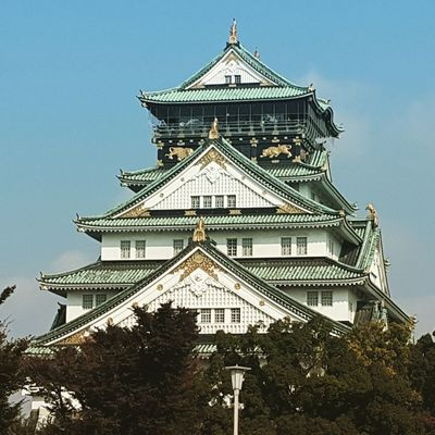 Architecture History Building Exterior Tree Sky Roof No People Travel Destinations Outdoors Built Structure Day Osaka Castle Osaka,Japan