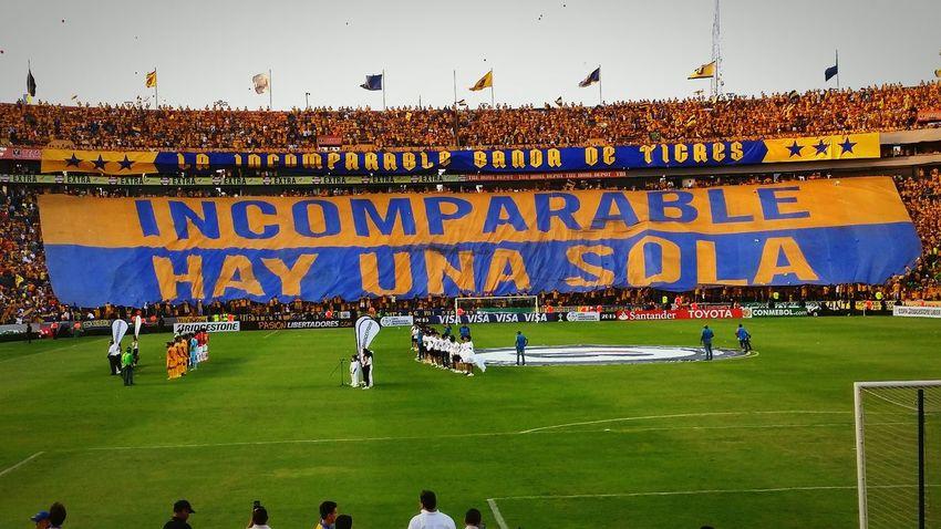 INCOMPARABLE HAY UNA SOLA! TigresUANL TIGRES❤ Nuevo Leon Copa Libertadores De America Semifinal Soccer⚽ Futbol LibresyLokos