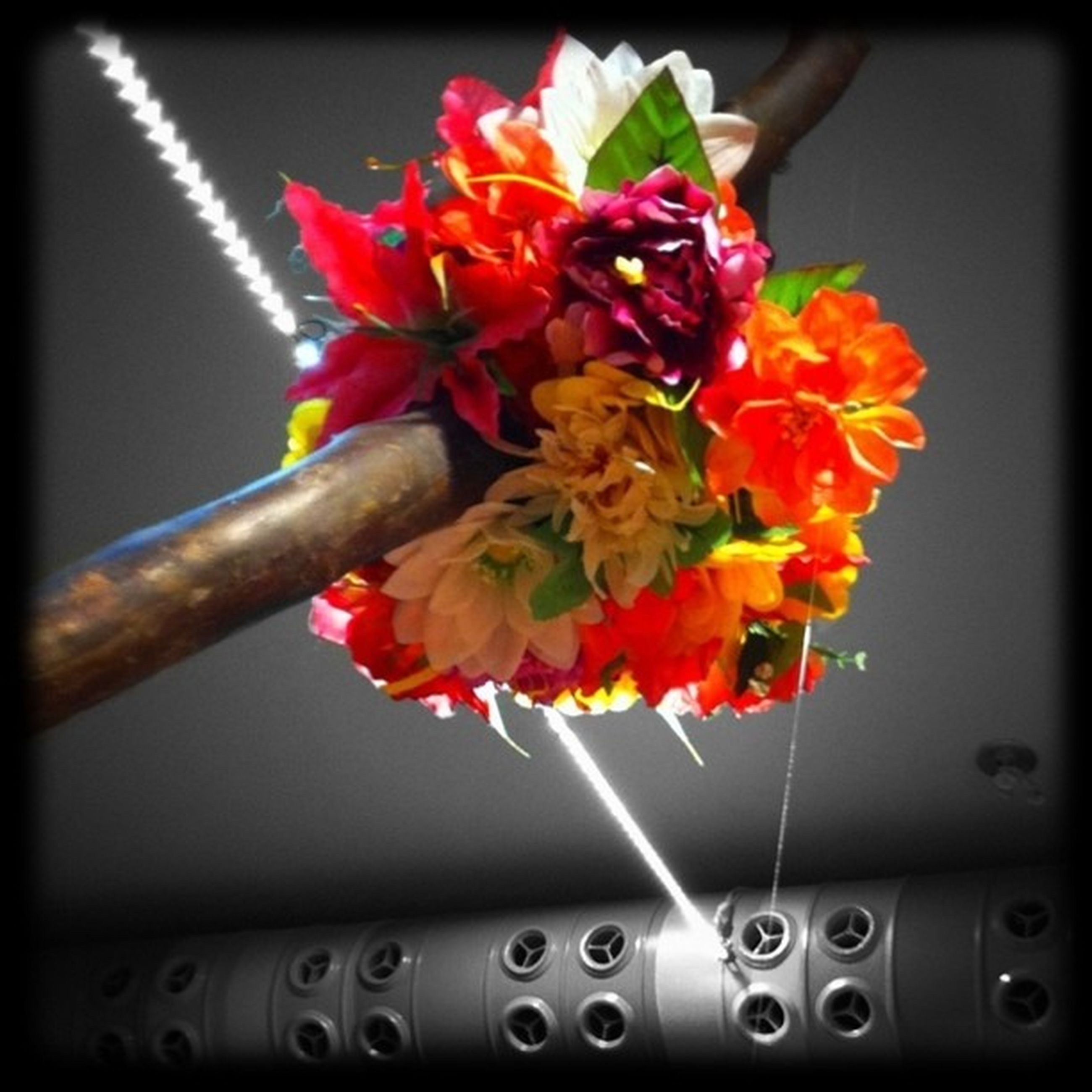 transfer print, auto post production filter, flower, close-up, red, petal, indoors, fragility, flower head, focus on foreground, freshness, no people, beauty in nature, selective focus, hanging, metal, nature, growth, decoration, stem