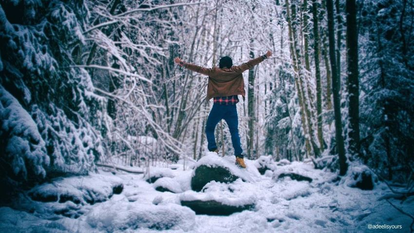 Spread the Wings and Fly. Life is waiting. Winter Only Men Cold Temperature Forest Nature Outdoors Forest Photography Modelling Selfie ✌ Levis501 Fashion Winter Snow Covered Oslo Srk Midnight Northpole Narnia
