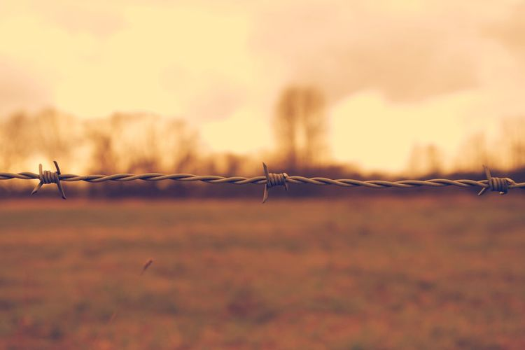 Close-up of barbed wire fence over field during sunset