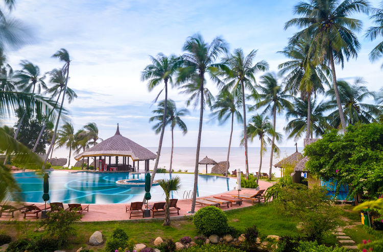 Swimming pool and sea view Beauty In Nature Coconut Palm Tree Day Daydreaming Horizon Over Water Indochine Outdoors Palm Tree Sea Southern California Swimming Pool Tourism Tourist Resort Tranquility Travel Destinations Tropical Climate V Vacations Water