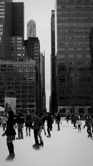 Ice encounters in the concrete jungle Black & White New York City