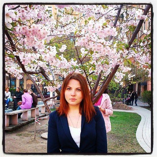 Спб Санкт -Петербург сакура весна И рыжее_солнце :)