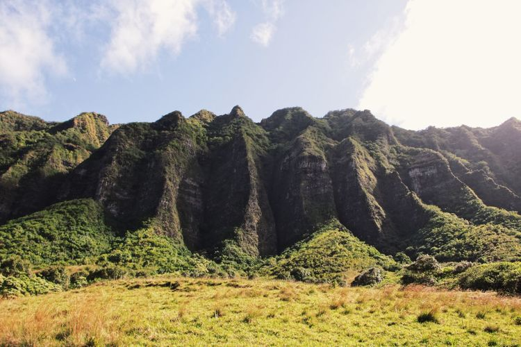 Kualoa ranch, where major movies were filmed EyeEm Ready   Beauty In Nature Day Grass Growth Landscape Mountain Nature No People Outdoors Scenics Sky Tranquil Scene Tranquility Tree