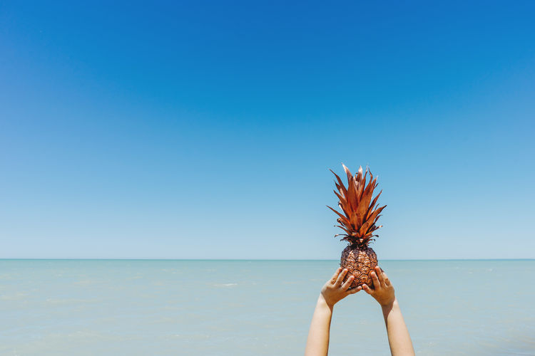 Cropped Hands Of Woman Holding Pineapple By Sea Against Clear Blue Sky During Sunny Day