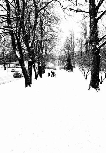 Photo♡ White Photo FinlandsWinter Finland♥ White Album Life In Motion Heinola Black And White Photography Hello World Day