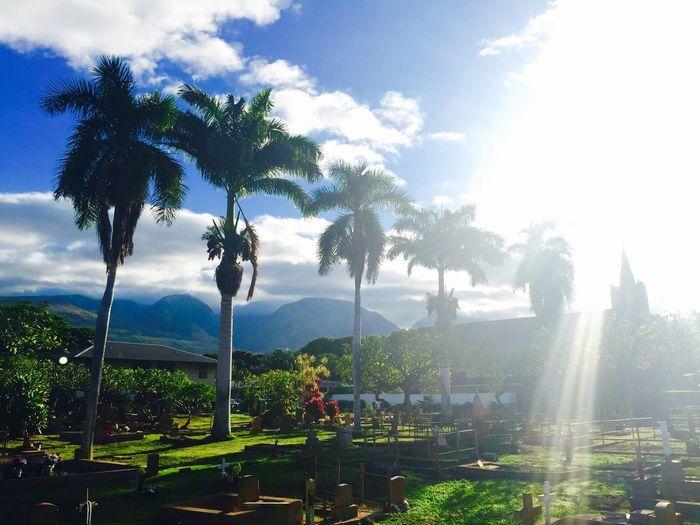 Holy on Christmas ? Holiday Church Clouds And Sky Hello World Hawaii Enjoying The Sun Beautiful Surroundings Architecture Enjoying Life