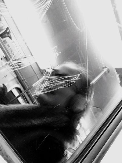 Sweden Stree Photography Window Streetphoto_bw Gothenburg_bw People