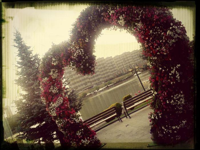 evli çiftlerin dogal stüdyo mekani Love♡ @ankara