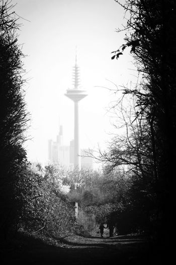 Skyline of Frankfurt in Black And White from a different angle