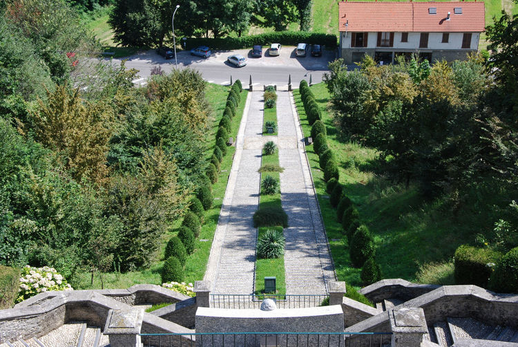 High angle view of garden by building