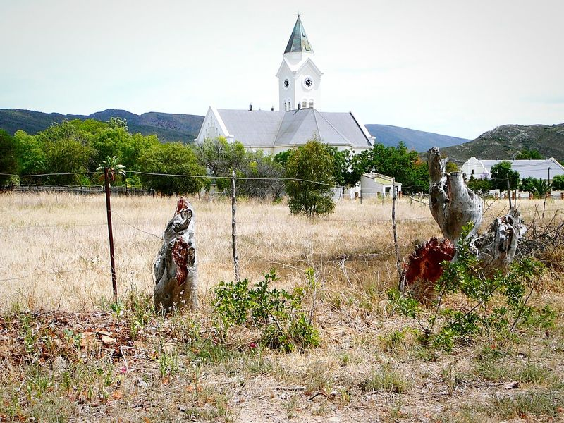 The Old Church, McGregor ~ Tree Old-fashioned No People Outdoors Architecture Day Heat Nature Veld Tin Roof Sky Landscape Built Structure Church Steeple Church Buildings Cloud - Sky Barb Wire Architecture Thornbush Beauty In Nature Distant Views Western Cape The Architect - 2017 EyeEm Awards