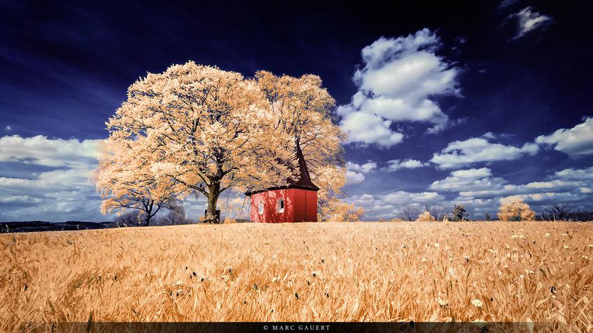 Infrarotaufnahme der roten Kapelle in Friesenhagen. Die Kapelle habe ich, entsprechend ihrer Originalfarbe wieder eingefärbt. Infrared Landscape EyeEm Best Shots EyeEm Best Edits