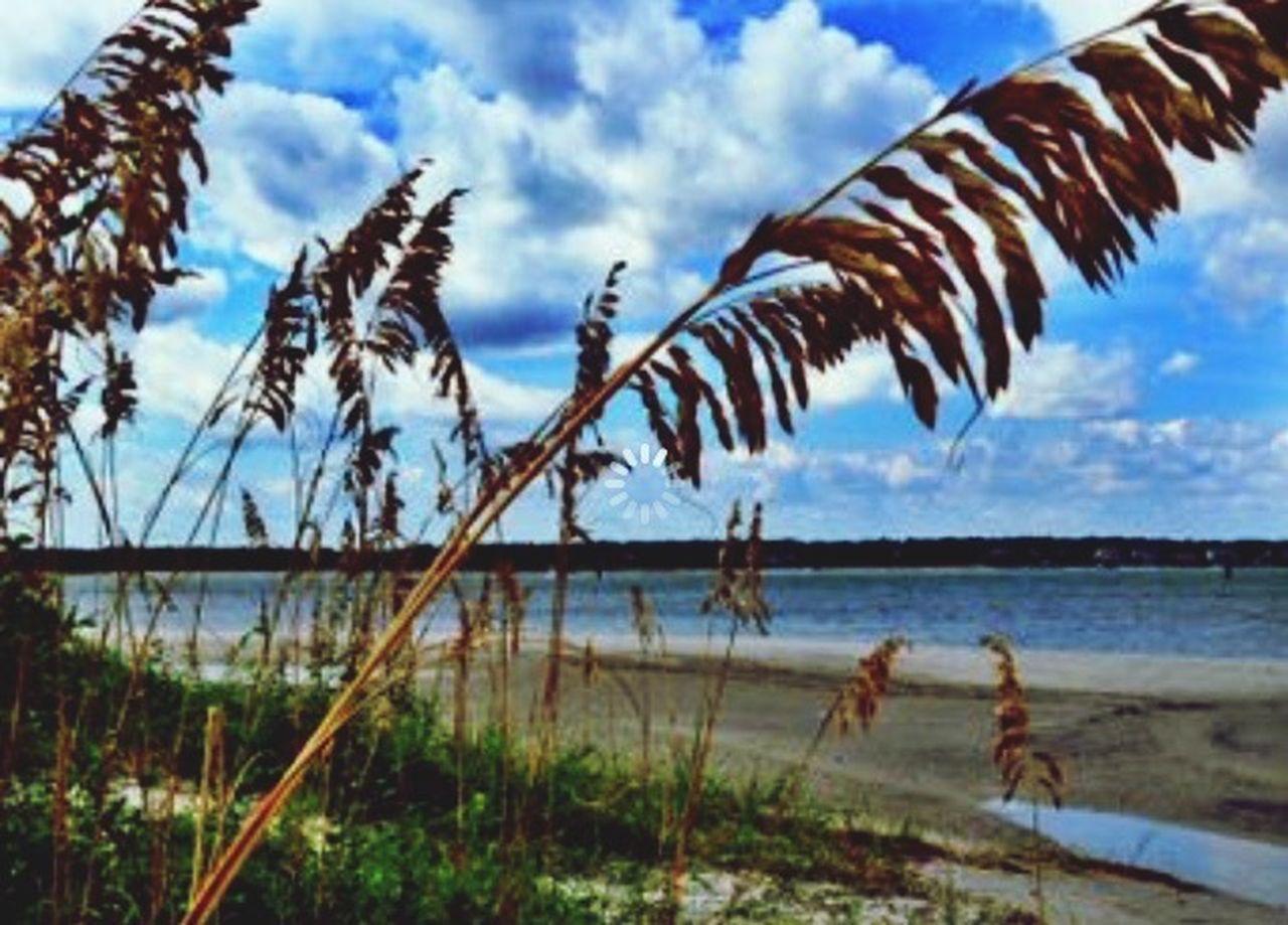 Beach Enjoying Life Wrightsville Beach