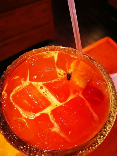 Fly in drink