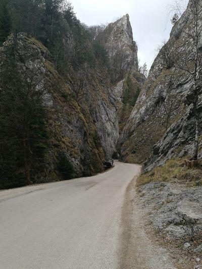 Sulov Mountains Bigmountains Slovakia🇸🇰 No People Tree Outdoors Nature Sky Day