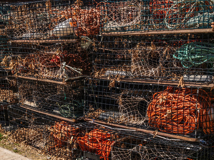 lobster cage Lobster Lobster Traps Abundance Barbecue Barbecue Grill Container Day Fishing Industry Food Food And Drink Freshness Healthy Eating Heat - Temperature High Angle View Large Group Of Objects Lobster Cages Meat Metal Nature No People Orange Color Outdoors Preparation  Rod