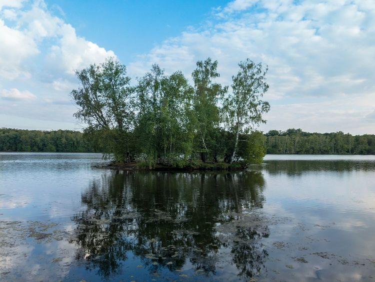 🏰🌴 France Nature_collection Travelphotography Sunny Château French Castle Castles Stillness Tree Plant Reflection Lake Water Sky Cloud - Sky Non-urban Scene Scenics - Nature Beauty In Nature