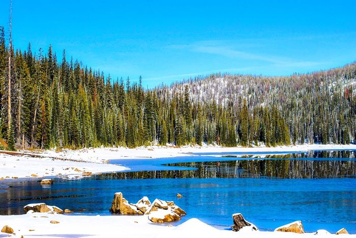 Ice Winter Wonderland Winterlake Mountains Naturelovers Nikontop Lake Nikonphotography Nikon Bitterroot Valley Montana Bitterroot Trees Snow TreePorn Mountain_collection Snow Sports