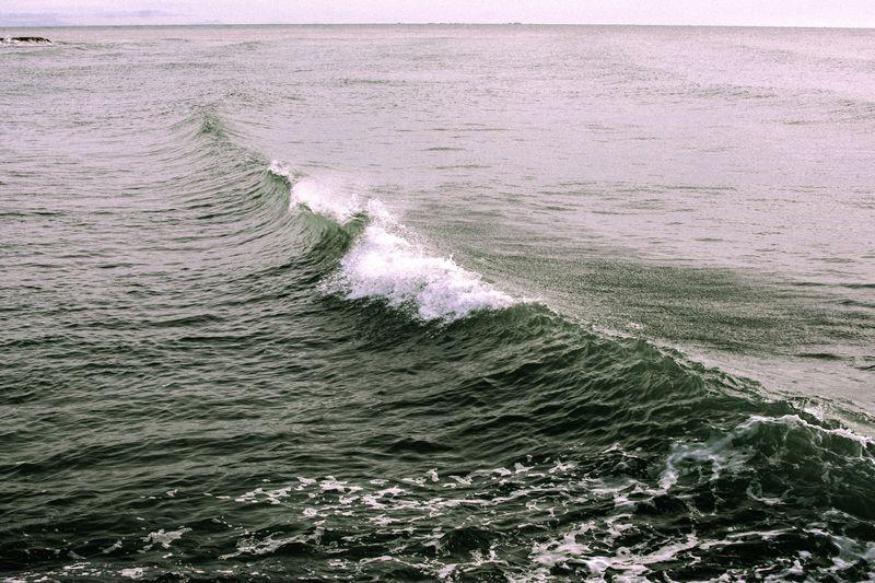 Sea Full Frame