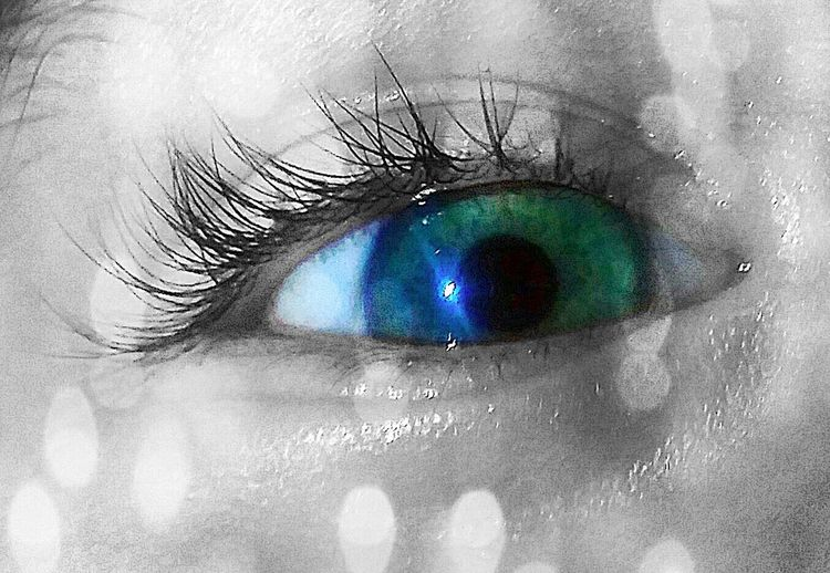Eye Close-up Blue Eyes Green Eyes Blue Green Eyes Eyes Eyes Are Soul Reflection Eyelashes Eyelash Watching Looking Twinkle Eyes Sparkle Sparkles Looking Into The Eyes Looking Into My Soul Looking Into My Eyes Throughachildseyes Through My Eyes Window To The Soul Window To The Mind Inner Strength Inner Peace Inner Reflection Inner Beauty