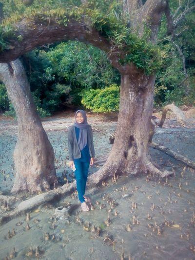 Tree Water Full
