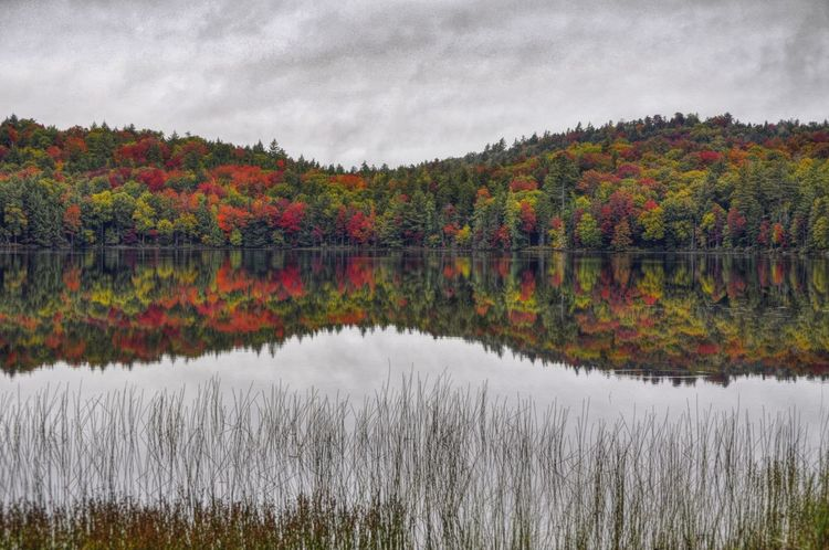 Reflection Water Multi Colored Nature Landscape Beauty In Nature Outdoors Reflection Lake No People Tranquil Scene Nature At Work Autumn 2016 Autumn Collection Beauty In Nature Adirondack Mountains Reflections In The Water Autumn Colours Natural Parkland Nature Nature On Your Doorstep Reflection_collection Reflection Share Your Adventure Upstate New York 43 Golden Moments